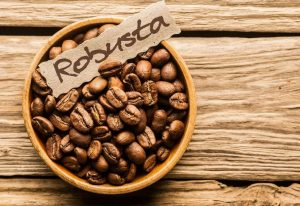 Jenis kopi robusta